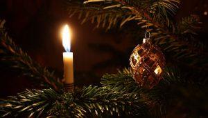 feliz año 2019, feliz navidad