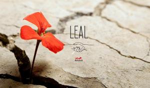 El nuevo catálogo Leal, de Hítalo, se adapta a la circunstancia actual