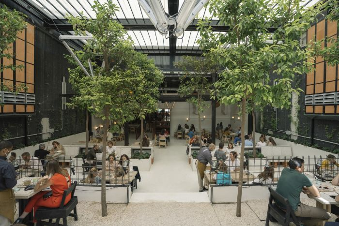 Roca Madrid Gallery MO